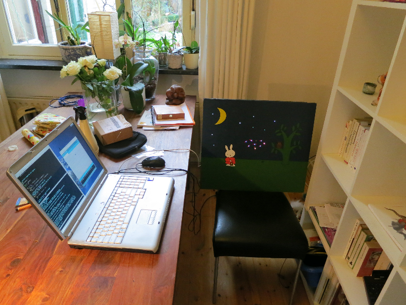 Debug and programming setup